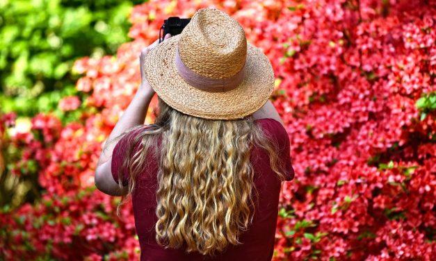 Los 5 mejores trucos para hacer crecer tu cabello